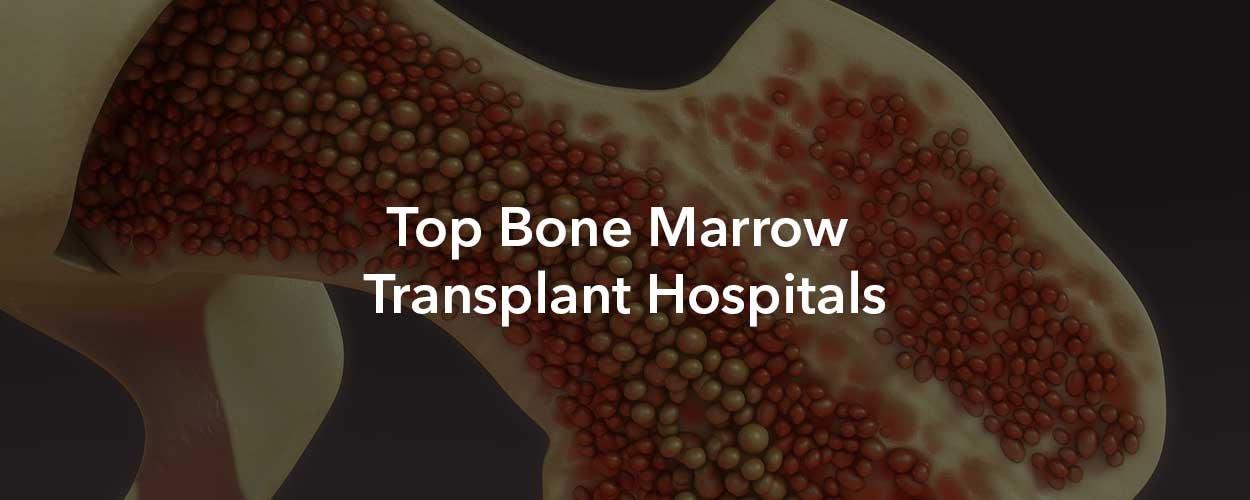 Bone Marrow Transplant Hospitals