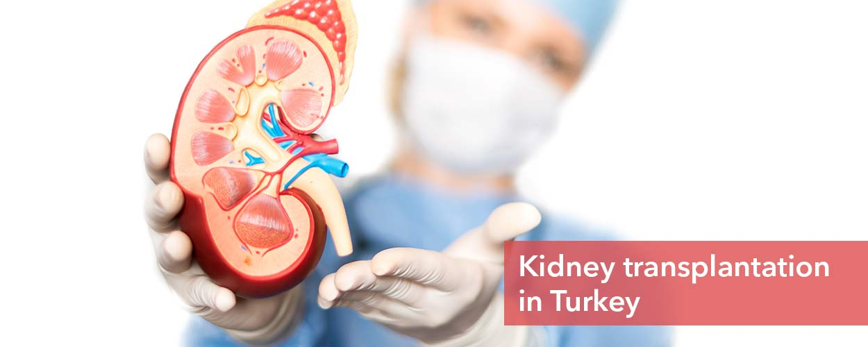 Kidney Transplant in Turkey